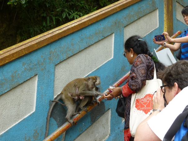 Unfortunately, no one seemed interested in following that rule (I assume that would not have been the case in Singapore, where rules are taken a bit more seriously!).  Note the baby clutching onto the monkey.