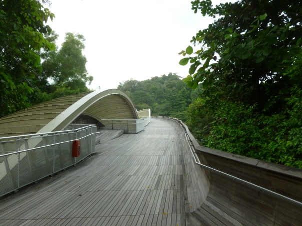 This is the Henderson Waves, another high-design pedestrian bridge.  It is 118 feet above the road, and the undulating wave form would probably be better appreciated from under than on the bridge.  It gets lit with LEDs at night which would be cool to see.